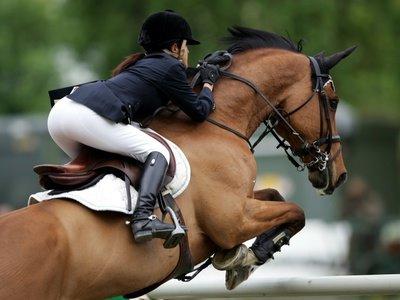 pferderennen hannover termine 2017